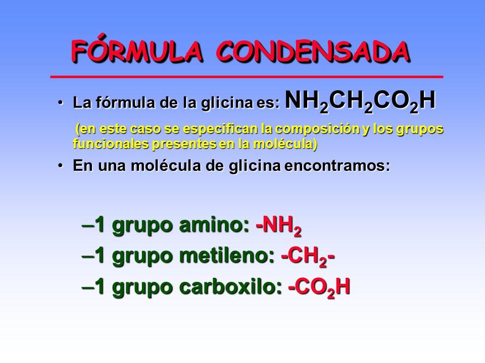FÓRMULA CONDENSADA 1 grupo amino: -NH2 1 grupo metileno: -CH2-