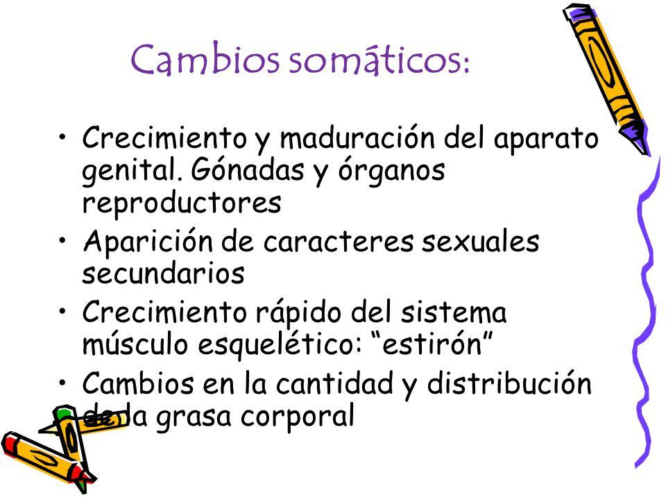Cambios somáticos: Crecimiento y maduración del aparato genital. Gónadas y órganos reproductores. Aparición de caracteres sexuales secundarios.