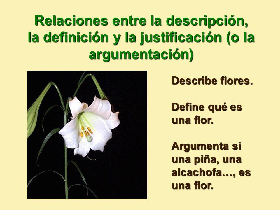 Relaciones entre la descripción, la definición y la justificación (o la argumentación)
