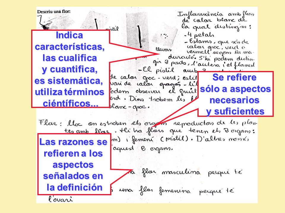 Indica características, las cualifica. y cuantifica, es sistemática, utiliza términos. ciéntíficos...