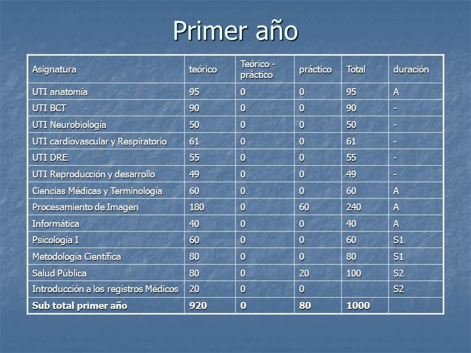 Primer año Asignatura teórico Teórico - práctico práctico Total