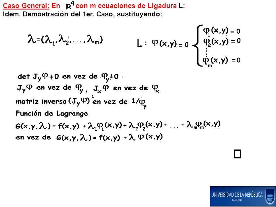 Caso General: En con m ecuaciones de Ligadura L: