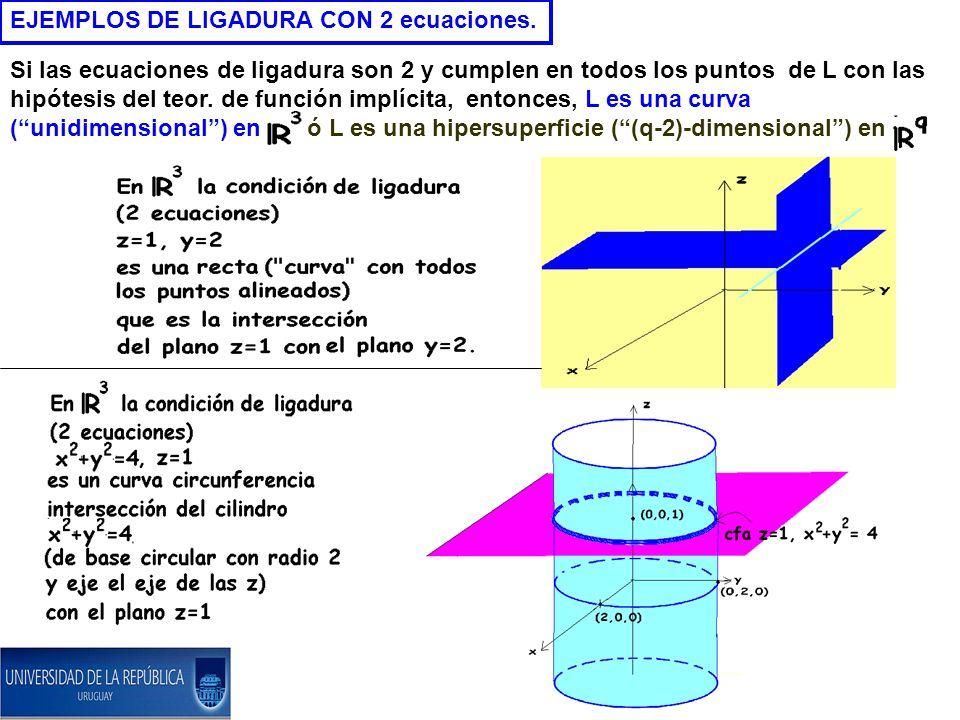 EJEMPLOS DE LIGADURA CON 2 ecuaciones.