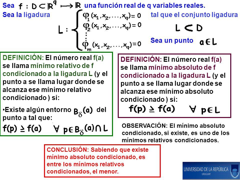 Sea un punto Sea una función real de q variables reales.
