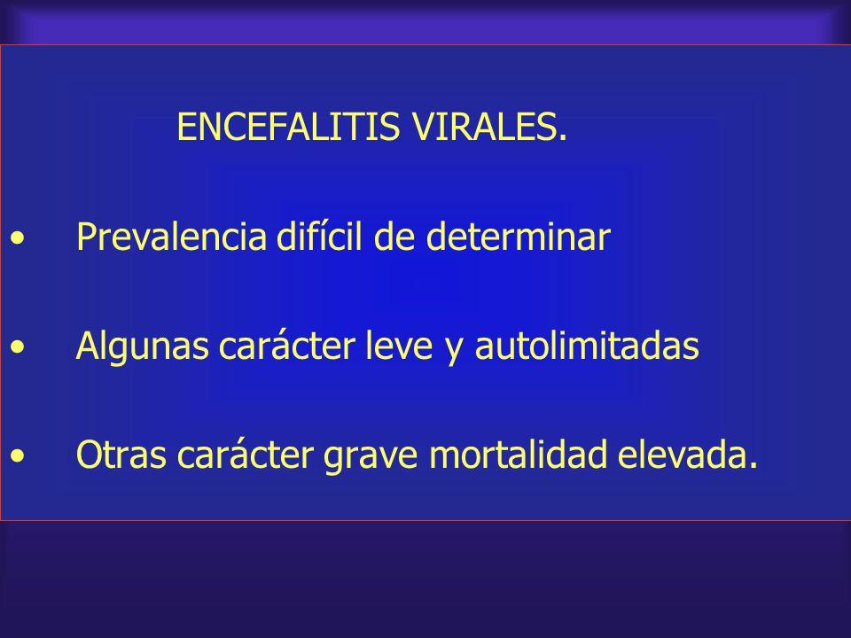 ENCEFALITIS VIRALES. Prevalencia difícil de determinar.