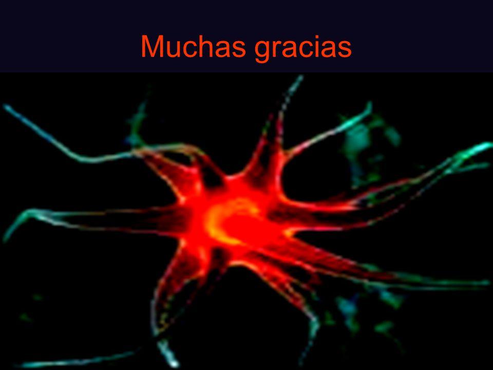 Muchas gracias Hospital Pasteur Encefalatis viral