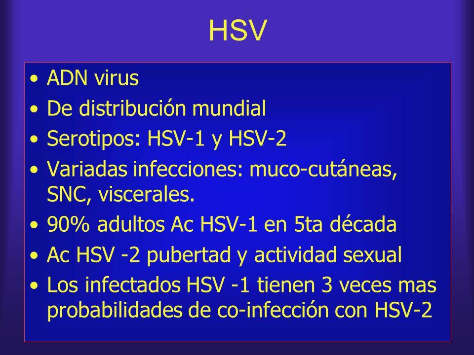 HSV ADN virus De distribución mundial Serotipos: HSV-1 y HSV-2