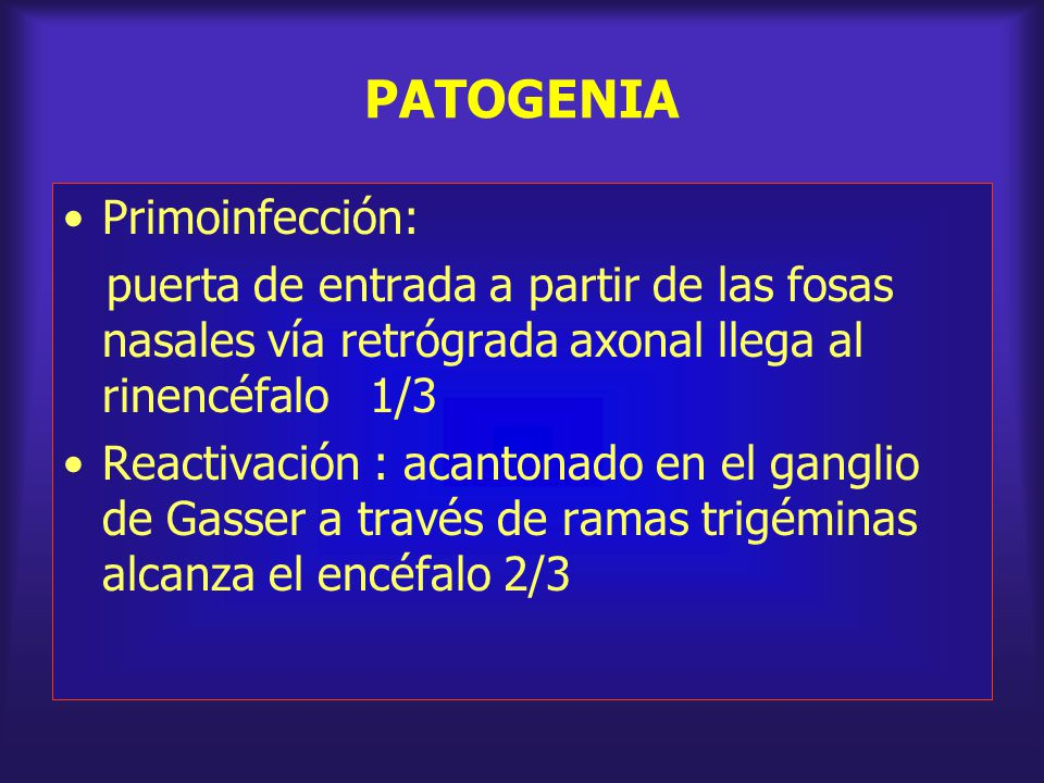 PATOGENIA Primoinfección:
