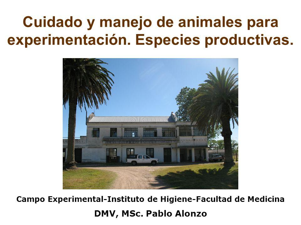 Campo Experimental-Instituto de Higiene-Facultad de Medicina
