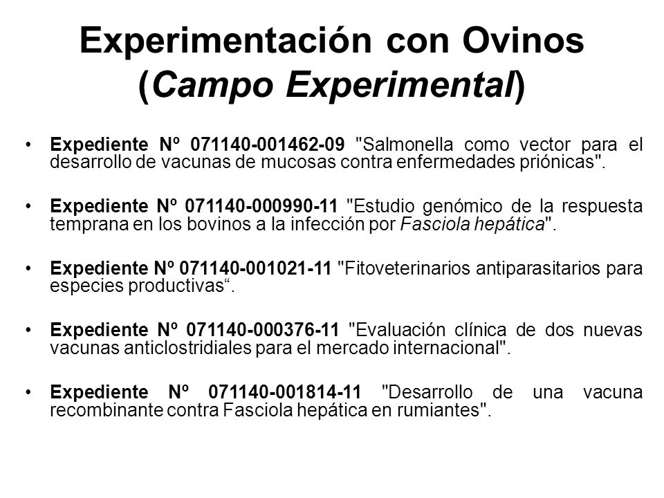 Experimentación con Ovinos (Campo Experimental)
