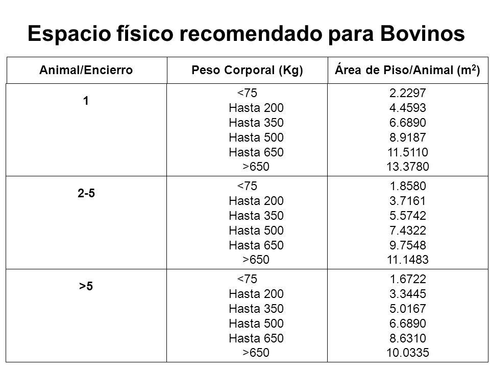 Espacio físico recomendado para Bovinos