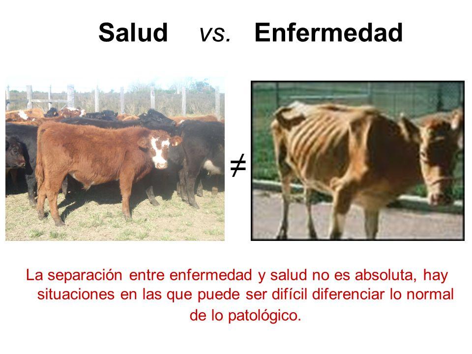 Salud vs. Enfermedad ≠