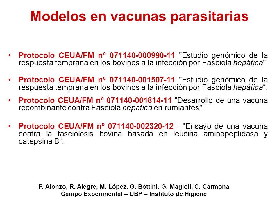 Modelos en vacunas parasitarias
