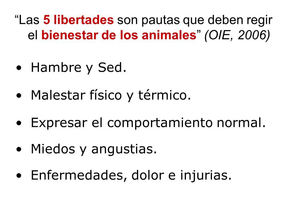Las 5 libertades son pautas que deben regir el bienestar de los animales (OIE, 2006)