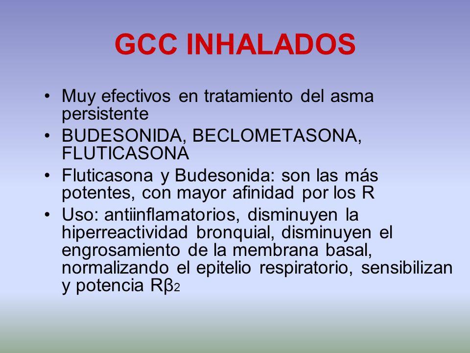 GCC INHALADOS Muy efectivos en tratamiento del asma persistente