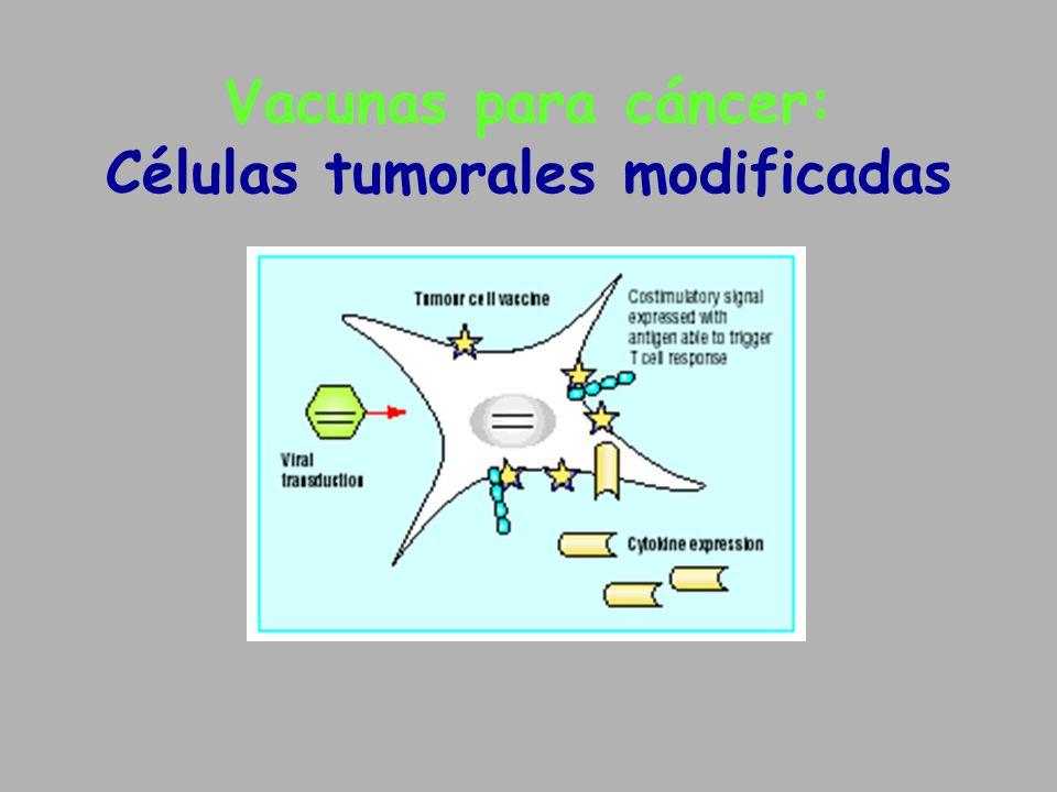 Vacunas para cáncer: Células tumorales modificadas