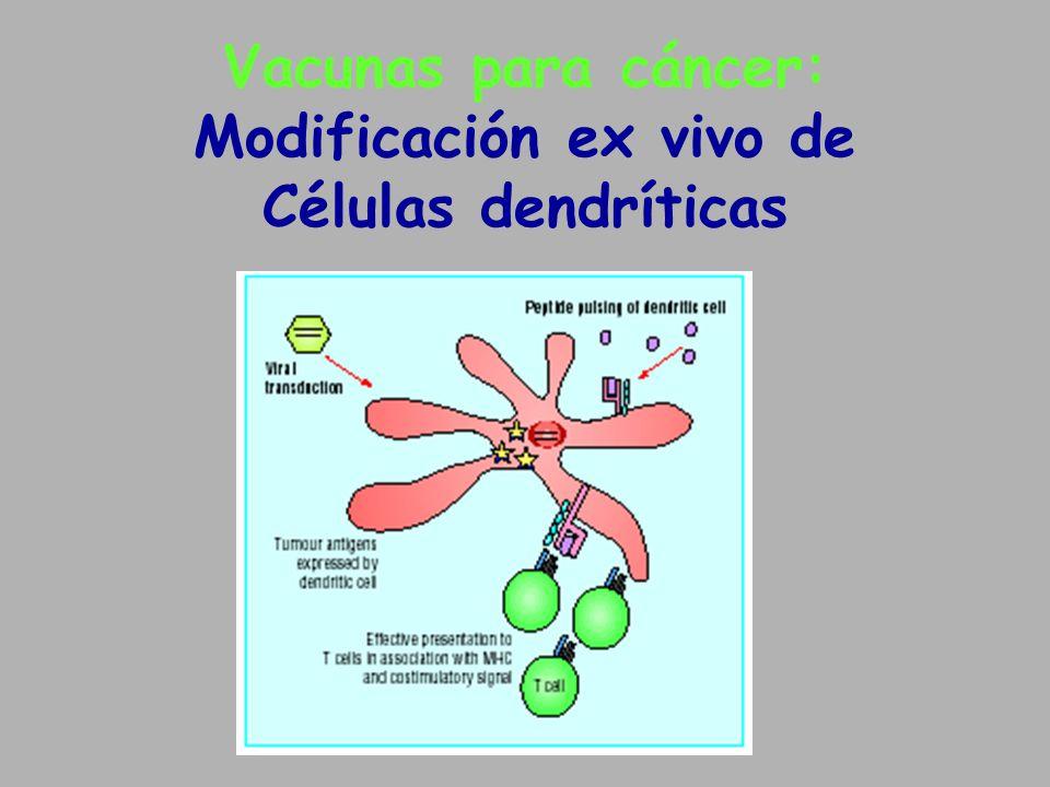 Vacunas para cáncer: Modificación ex vivo de Células dendríticas