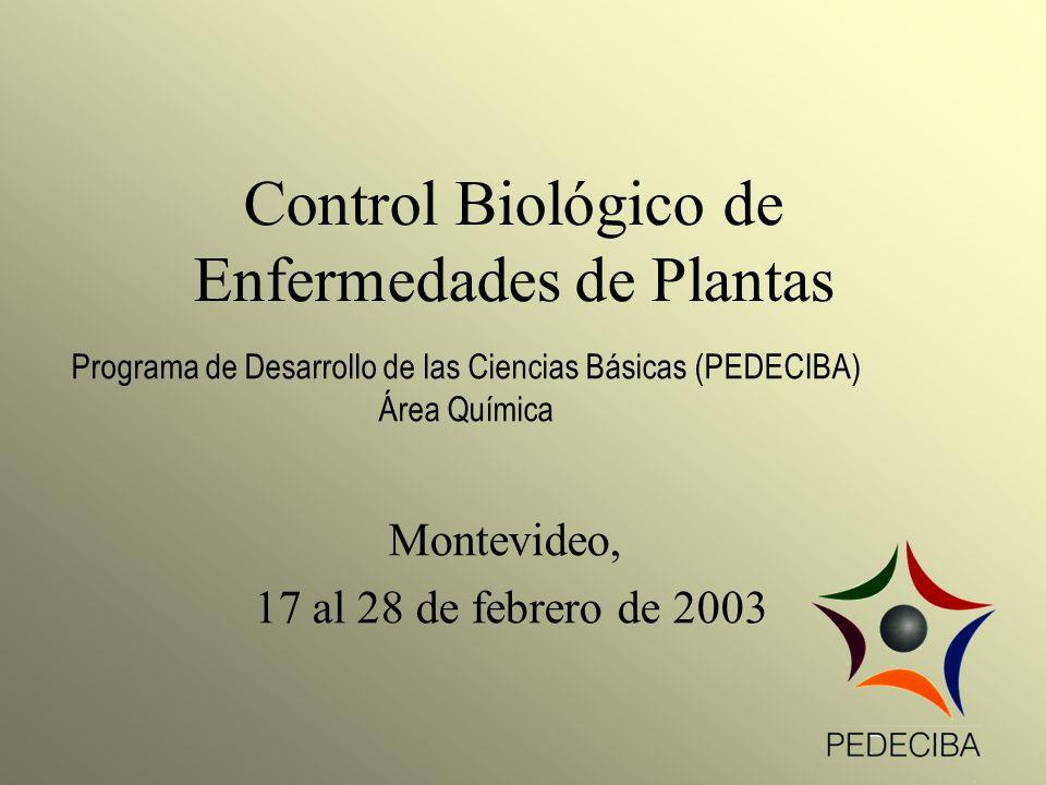 Control Biológico de Enfermedades de Plantas