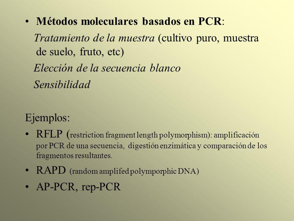 Métodos moleculares basados en PCR: