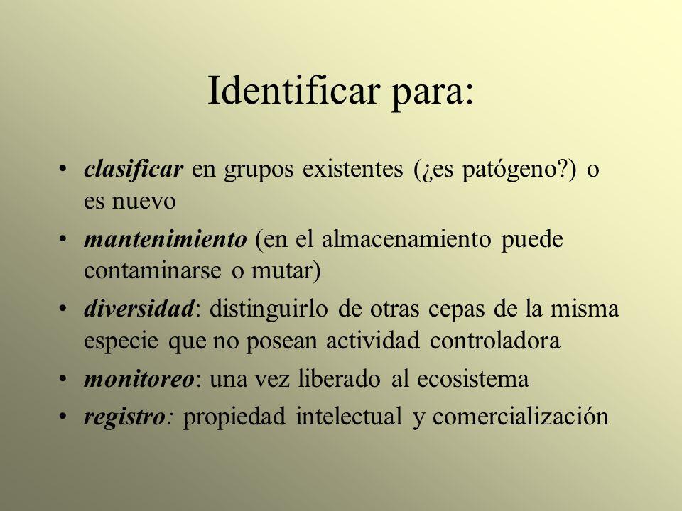 Identificar para: clasificar en grupos existentes (¿es patógeno ) o es nuevo. mantenimiento (en el almacenamiento puede contaminarse o mutar)