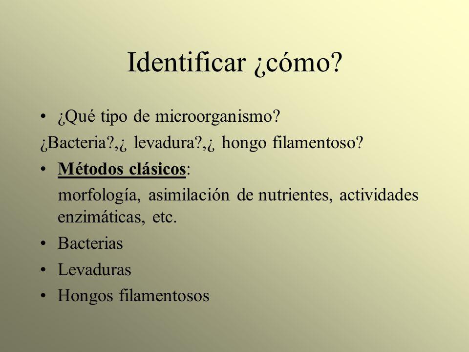Identificar ¿cómo ¿Qué tipo de microorganismo