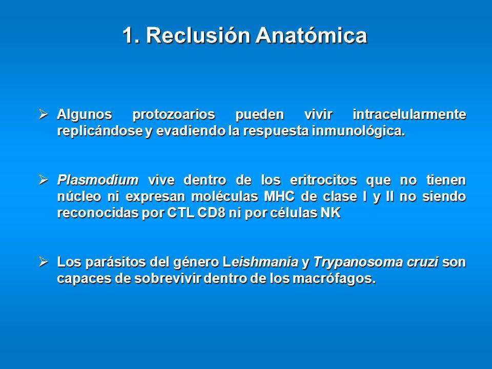 1. Reclusión Anatómica Algunos protozoarios pueden vivir intracelularmente replicándose y evadiendo la respuesta inmunológica.