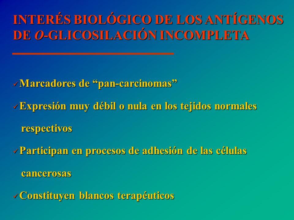 INTERÉS BIOLÓGICO DE LOS ANTÍGENOS DE O-GLICOSILACIÓN INCOMPLETA