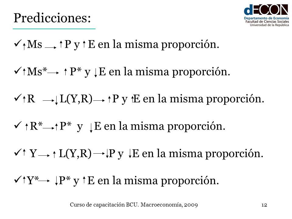 Curso de capacitación BCU. Macroeconomía, 2009