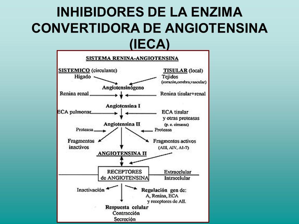 INHIBIDORES DE LA ENZIMA CONVERTIDORA DE ANGIOTENSINA (IECA)