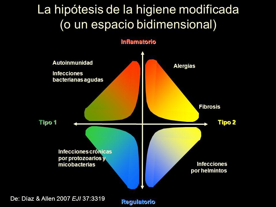 La hipótesis de la higiene modificada (o un espacio bidimensional)