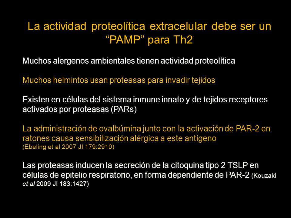 La actividad proteolítica extracelular debe ser un PAMP para Th2