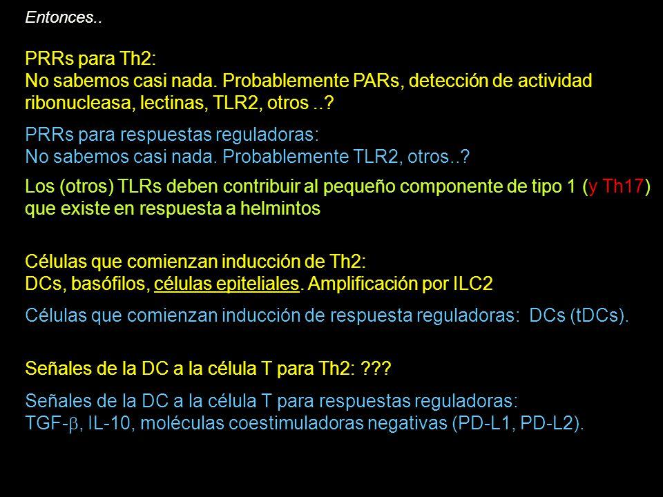 PRRs para respuestas reguladoras: