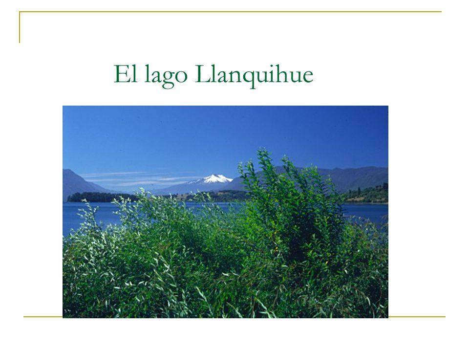 El lago constituye un escenario de increible belleza natural