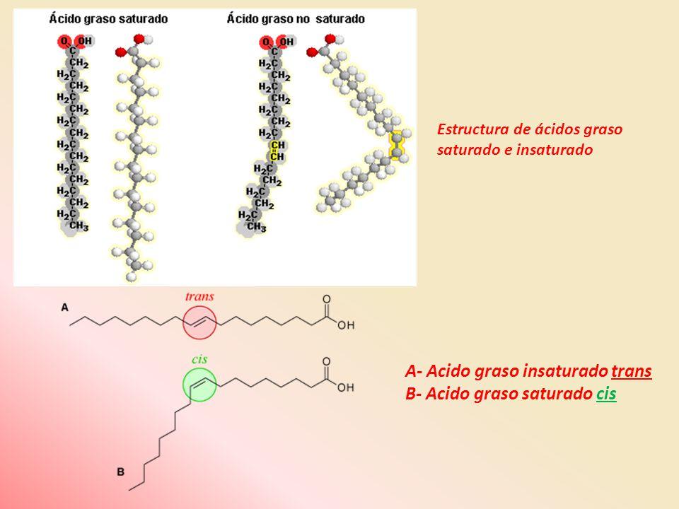 A- Acido graso insaturado trans B- Acido graso saturado cis