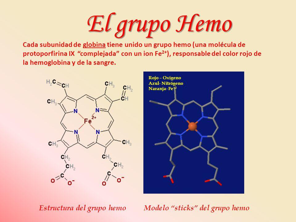 El grupo Hemo