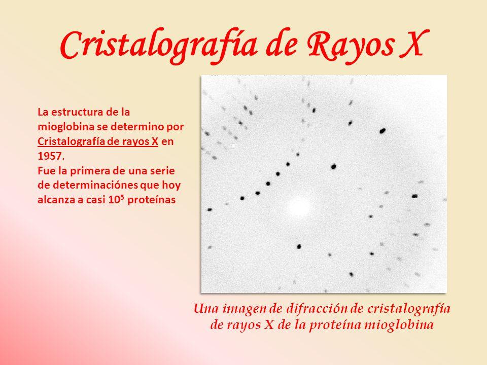 Cristalografía de Rayos X
