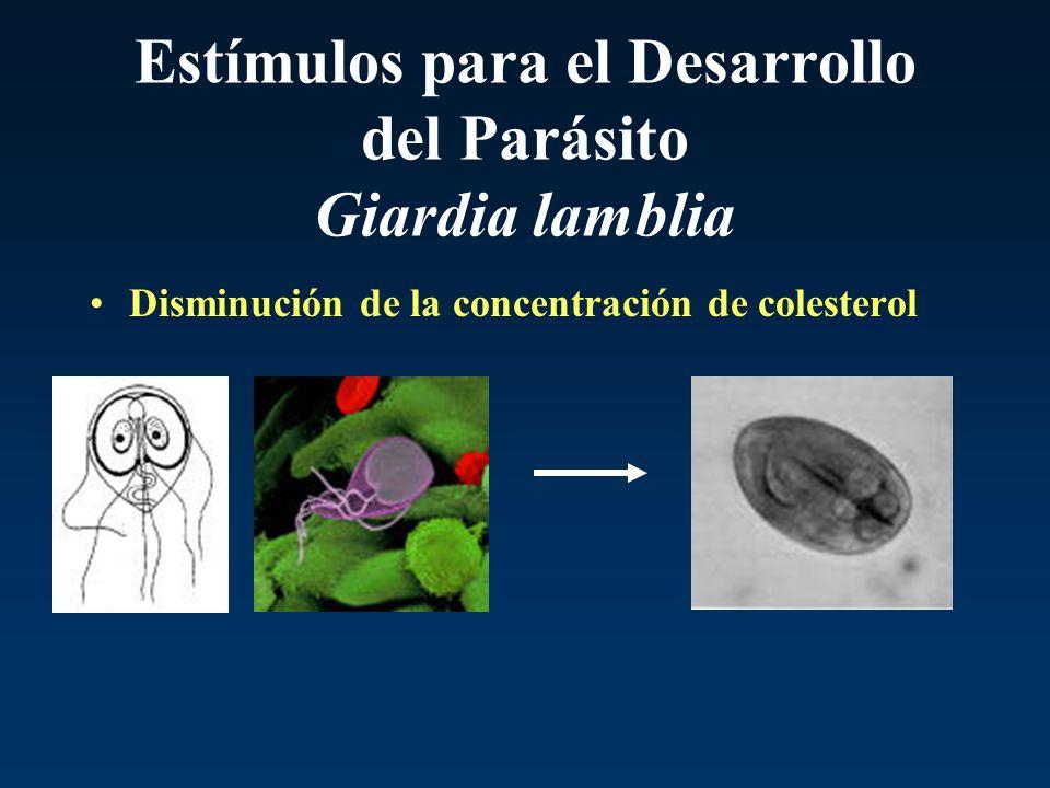 Estímulos para el Desarrollo del Parásito Giardia lamblia