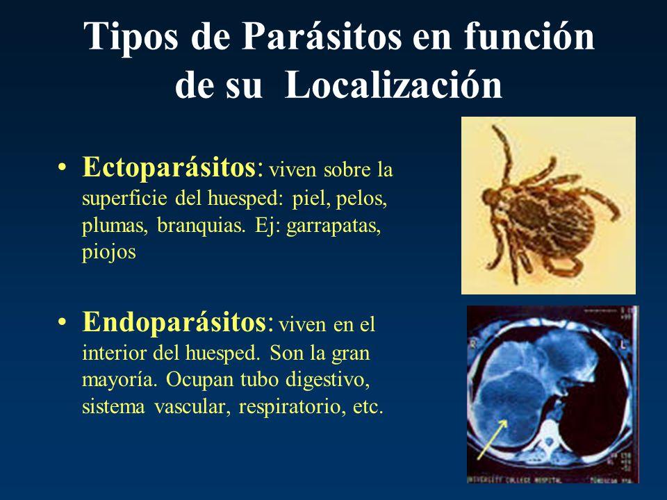 Tipos de Parásitos en función de su Localización