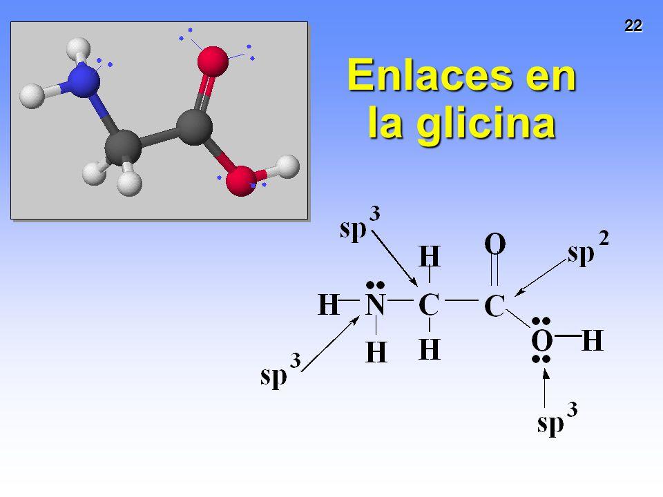 Enlaces en la glicina