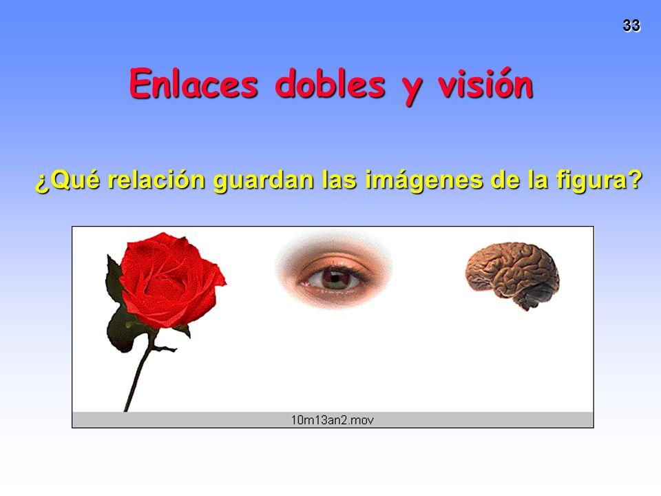 Enlaces dobles y visión