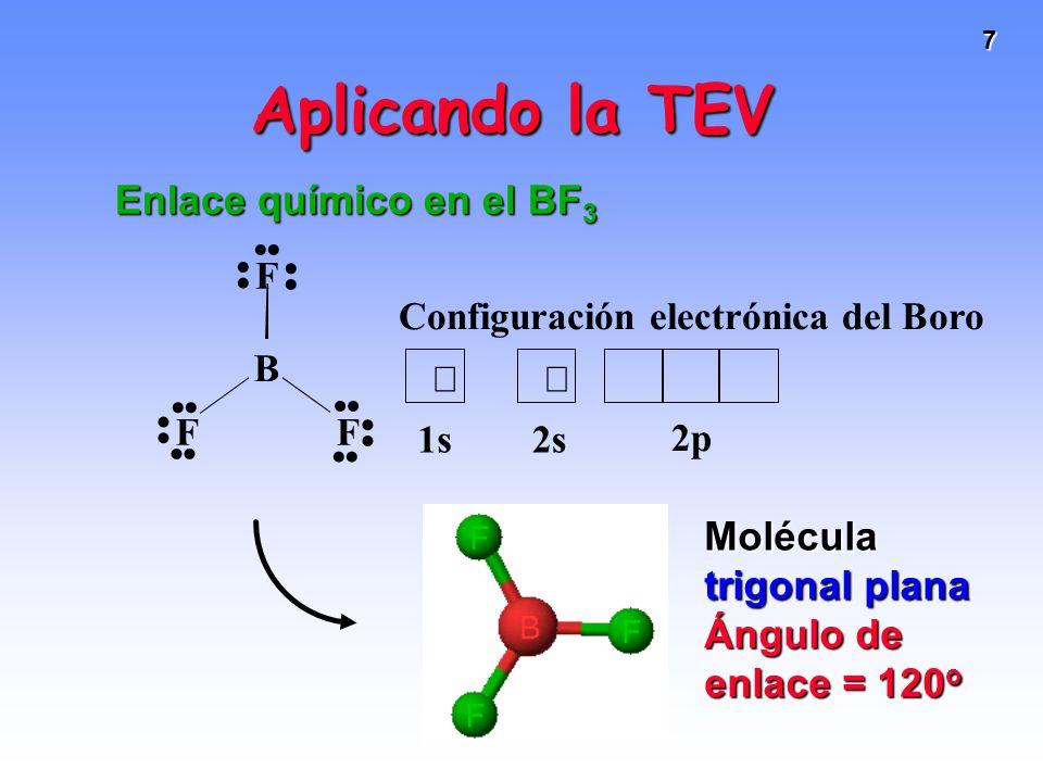 Aplicando la TEV Enlace químico en el BF3 Molécula trigonal plana