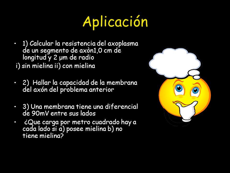 Aplicación 1) Calcular la resistencia del axoplasma de un segmento de axòn1,0 cm de longitud y 2 μm de radio.
