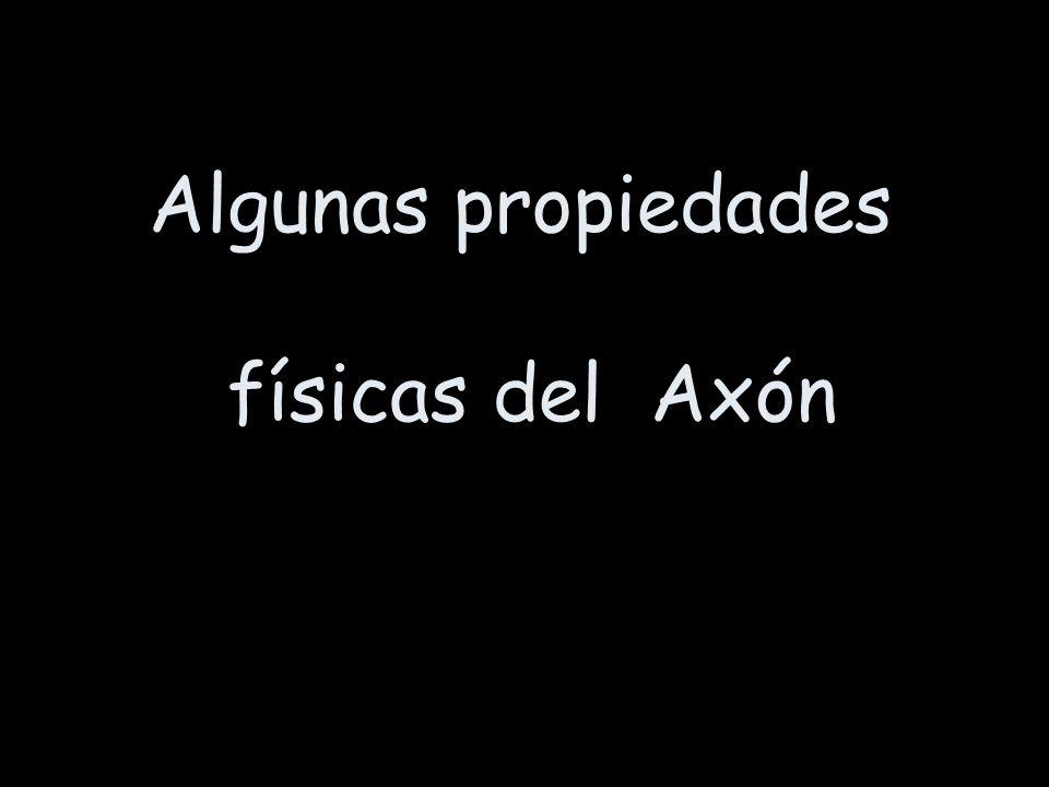 Algunas propiedades físicas del Axón