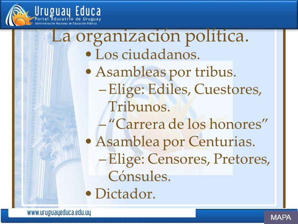 La organización política.