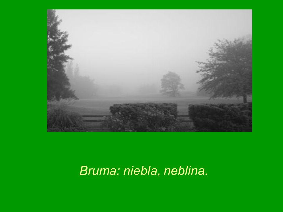 Bruma: niebla, neblina.