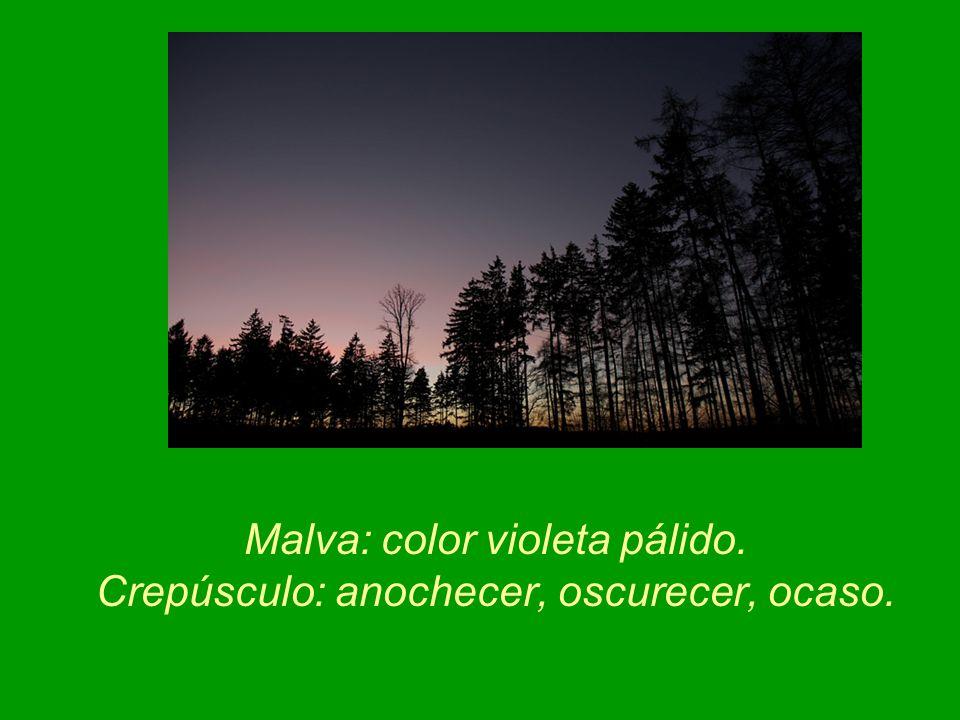 Malva: color violeta pálido. Crepúsculo: anochecer, oscurecer, ocaso.