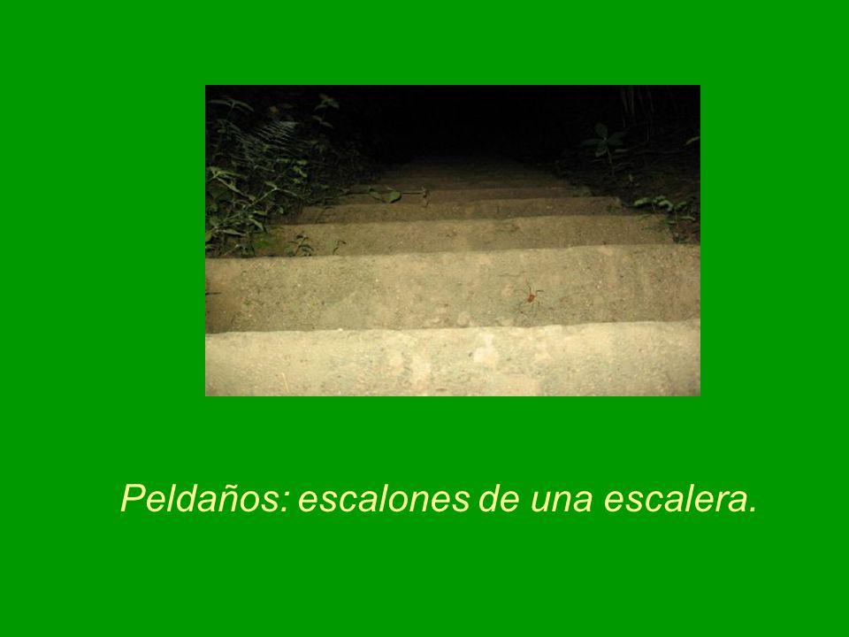 Peldaños: escalones de una escalera.