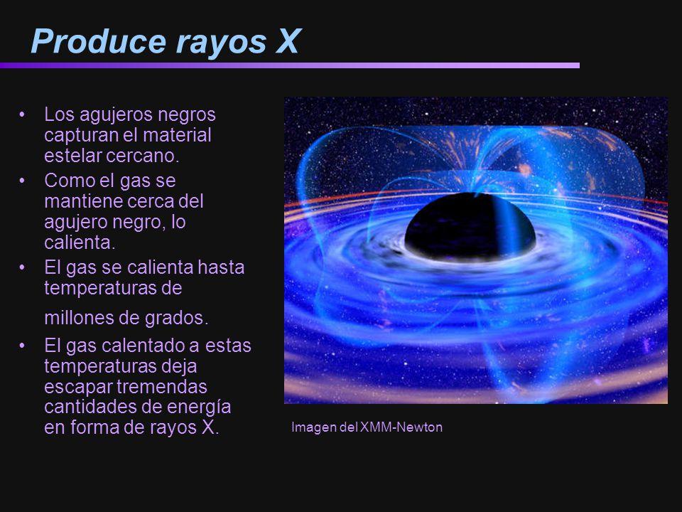 Produce rayos X Los agujeros negros capturan el material estelar cercano. Como el gas se mantiene cerca del agujero negro, lo calienta.