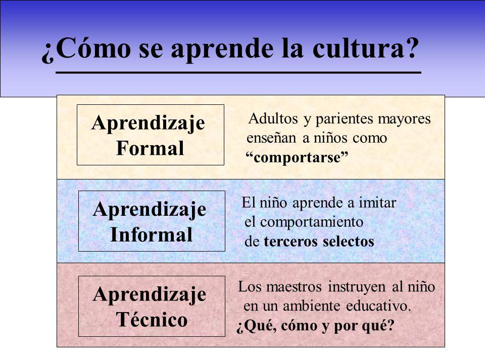 ¿Cómo se aprende la cultura