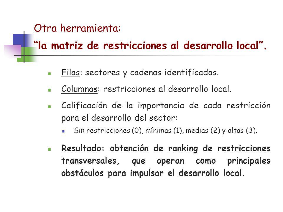 la matriz de restricciones al desarrollo local .